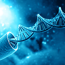 DNA Protection From Toxin Damage