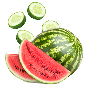 Cucumber and Watermelon
