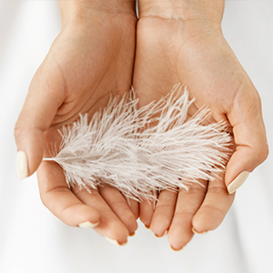 The Feather Touch